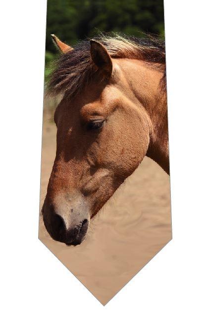 馬(写真_顔)ネクタイの写真