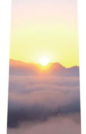 雲海ネクタイの写真