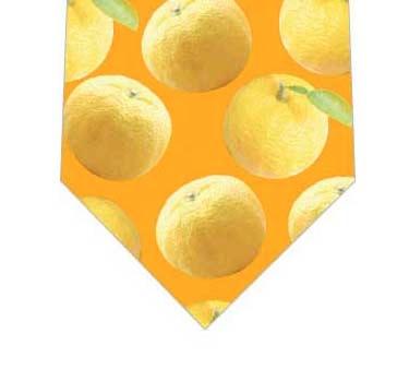 ゆずネクタイ(オレンジ)の写真