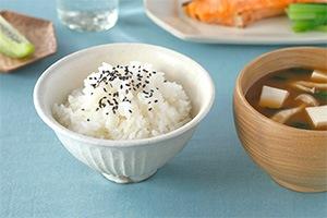 鉄散 線彫 めし碗 (古谷製陶所)