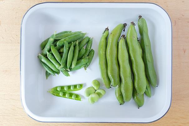 旬の食材「空豆とグリーンピース」