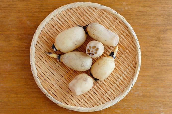 旬の食材「レンコン」