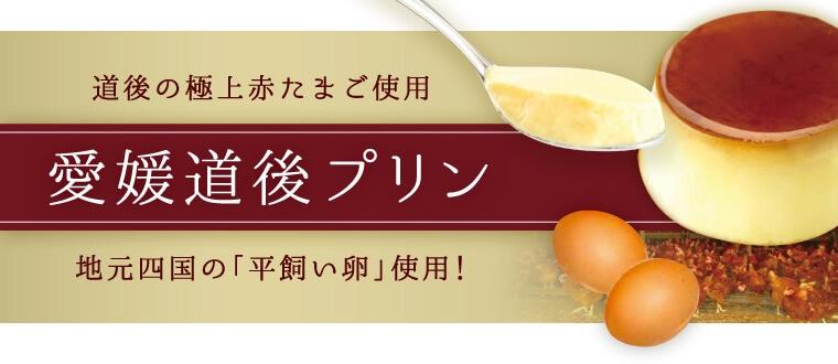 道後の極上赤たまご使用 愛媛道後プリン 地元四国の「平飼い卵」使用!