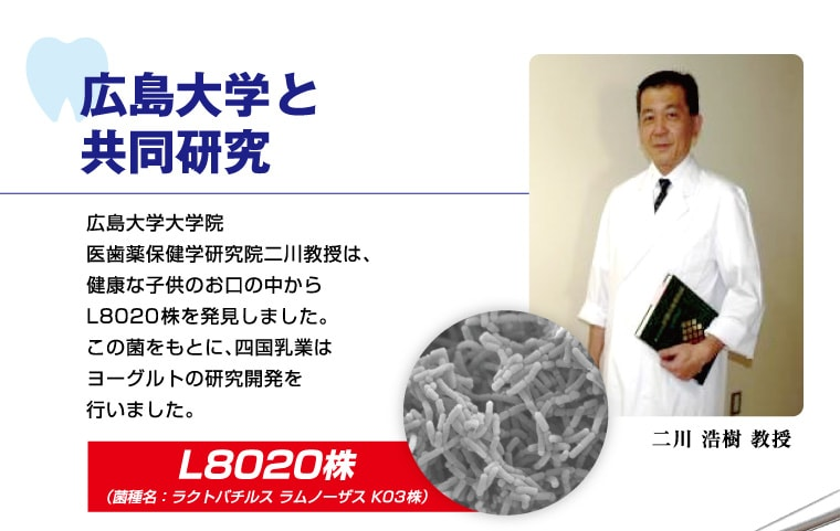 広島大学と共同研究 広島大学大学院医歯薬保健学研究院二川教授は、健康な子供のお口の中からL8020菌を発見しました。この菌をもとに、四国乳業はヨーグルトの研究開発を行いました。