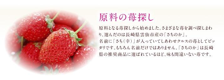 原料の苺探し 原料となる苺探しから始めました。さまざまな苺を調べ探しまわり、選んだのは長崎県雲仙市産の「さちのか」。名前に「さち(幸)」が入っていてしあわせクルスの苺としてピッタリです。もちろん名前だけではありません。「さちのか」は長崎県の推奨商品に選ばれているほど、味も間違いない苺です。
