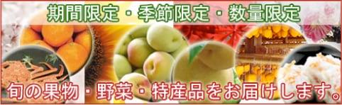 期間限定・季節限定・数量限定 旬の果物・野菜・特産品をお届けします。