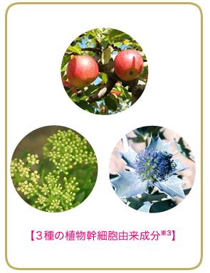 3種の植物幹細胞由来成分