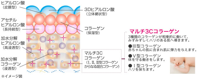 モイストチャージシステム イメージ図