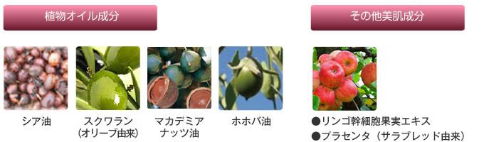 植物オイル成分・その他の美肌成分
