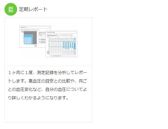 定期レポート