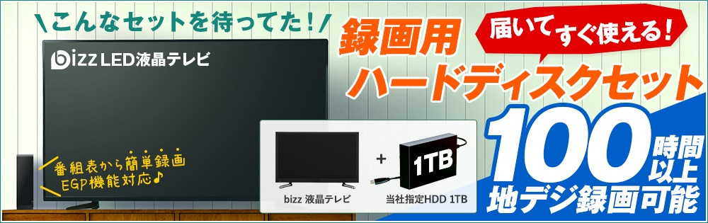 bizz液晶テレビ録画用ハードディスクセット特集