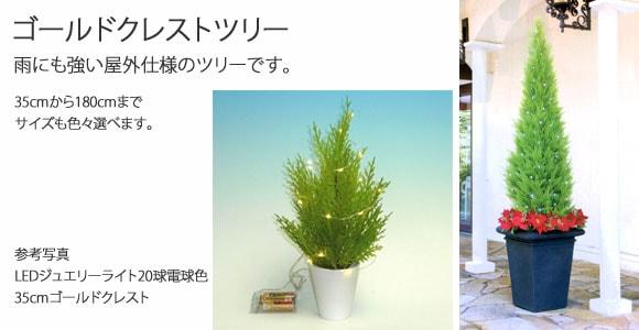 クレストツリー画像