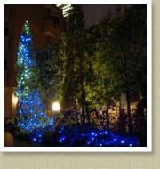 クリスマスイルミネーション施工写真-六本木マンション2