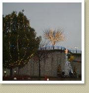 クリスマスイルミネーション施工写真-高速道サービスエリア3