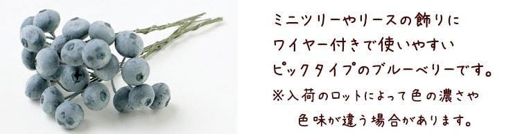 ブルーベリーピック(24本/パック)