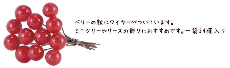 レッドベリー(L)(12〜15mm)(24本/パック)