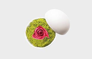 木村浩一郎 Koichiro Kimura フラワーボックス flower of love hot pink ローズ mat white