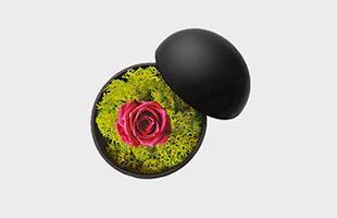 木村浩一郎 Koichiro Kimura フラワーボックス flower of love hot pink ローズmat black