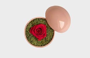 木村浩一郎 Koichiro Kimura フラワーボックス flower of love hot pink ローズbaby pink