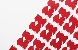 IGA PLAING CARDS 五十嵐威暢 トランプカード レッドはカードの背面の図柄が赤の商品になります