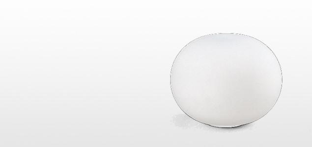 GLO-BALL/BASIC1