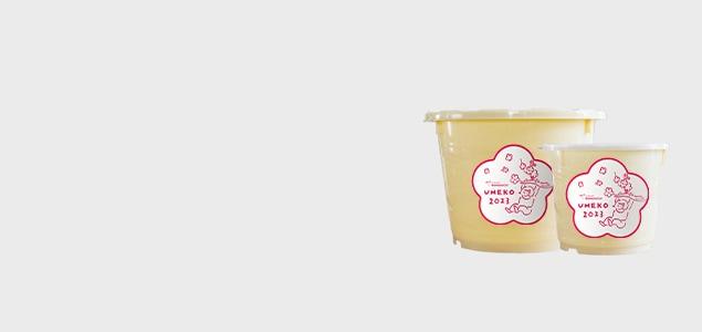 最高の梅と塩で作る「だれでもおいしく梅干しづくりキット 梅子(1kg 樽なし)」<br>※5月19日までの完全予約販売です。
