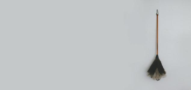 REDECKER レデッカー/オーストリッチ羽はたき 90cm