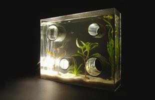 アクアリウム 水槽/private agualium/標準サイズ [アクアリウム 水槽/インテリアはプライベートアクアリウム]