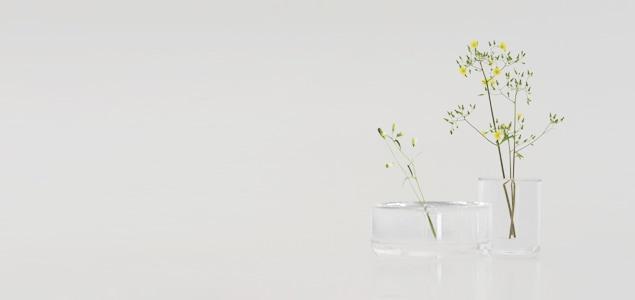 表面張力を利用し、水と花器、植物が一体となるフラワーベース「SHALLOWS」