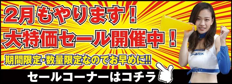 【2月】今月のセールコーナー