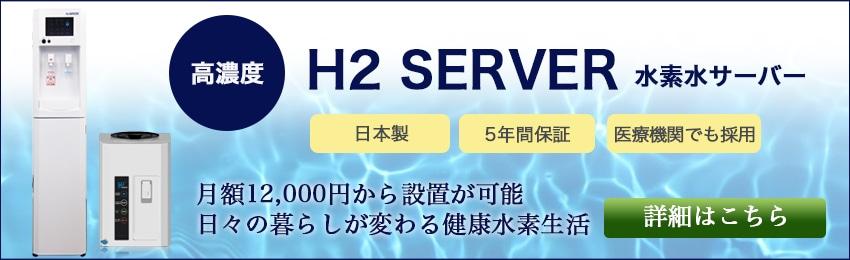 分割払い・ボーナス払いOK!24回払いなら1ヶ月約1万円、1日あたり約300円代で高濃度水素が飲み放題!