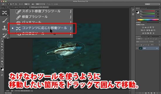 PhotoshopSS009