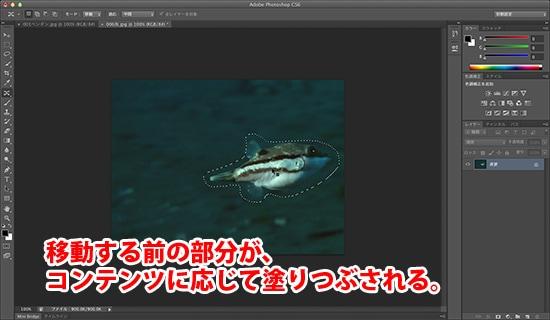 PhotoshopSS010