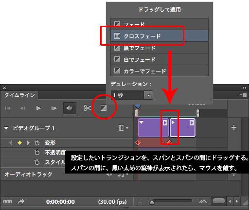 PSCS6_video2008