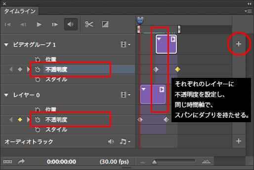 PSCS6_video2012