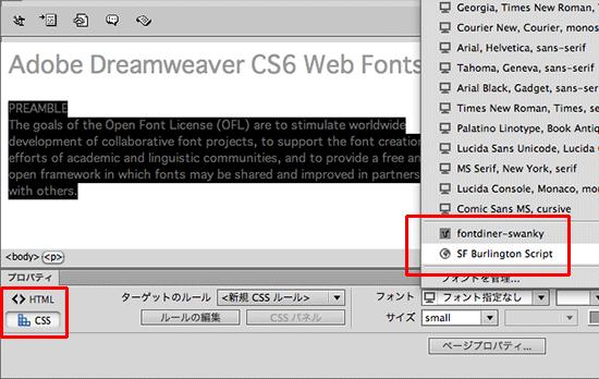 DWCS6_Webfonts014