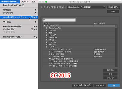 Prcc17_key002