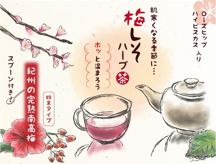 梅しそハーブ茶トップ
