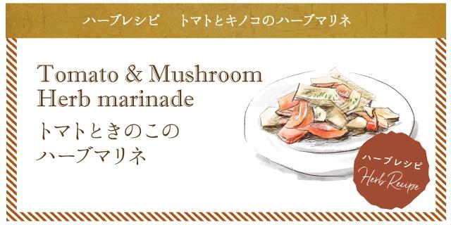 トマトとキノコのハーブマリネ