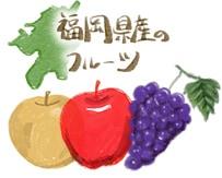 福岡県産フルーツ