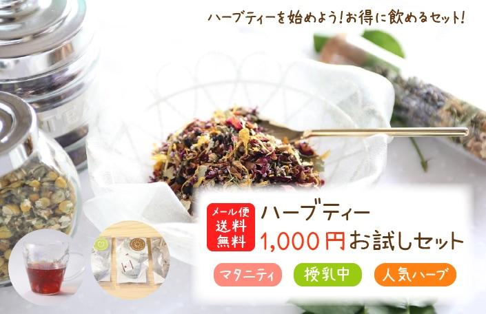 1000円お試しセット