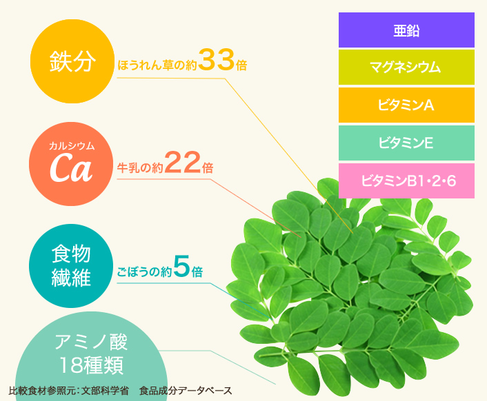 鉄分:ほうれん草の約33倍/カルシウム:牛乳の約22倍/食物繊維:ごぼうの約5倍/アミノ酸18種類 ポリフェノール・ビタミンB1・ビタミンB6・鉄分 比較食材参照元:文部科学省 食品成分データベース