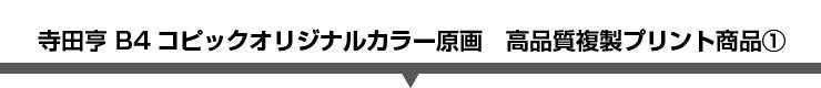 寺田亨 B4コピックオリジナルカラー原画 高品質複製プリント商品�