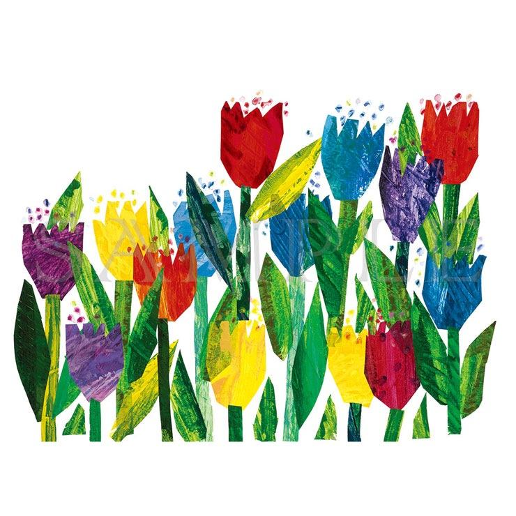 エリック・カール A5キャラファイン『Celestial Drawme book flowers チューリップ』