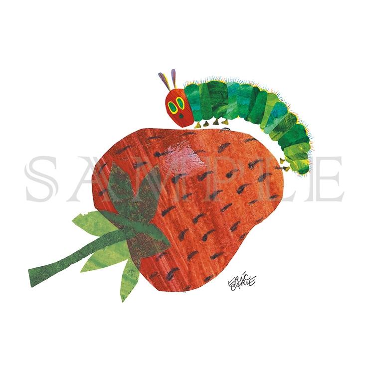 エリック・カール A5キャラファイン『On top of the strawberry いちご』