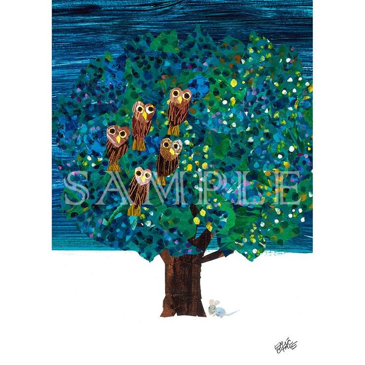 エリック・カール B5キャラファイン『Animals book owls 梟』