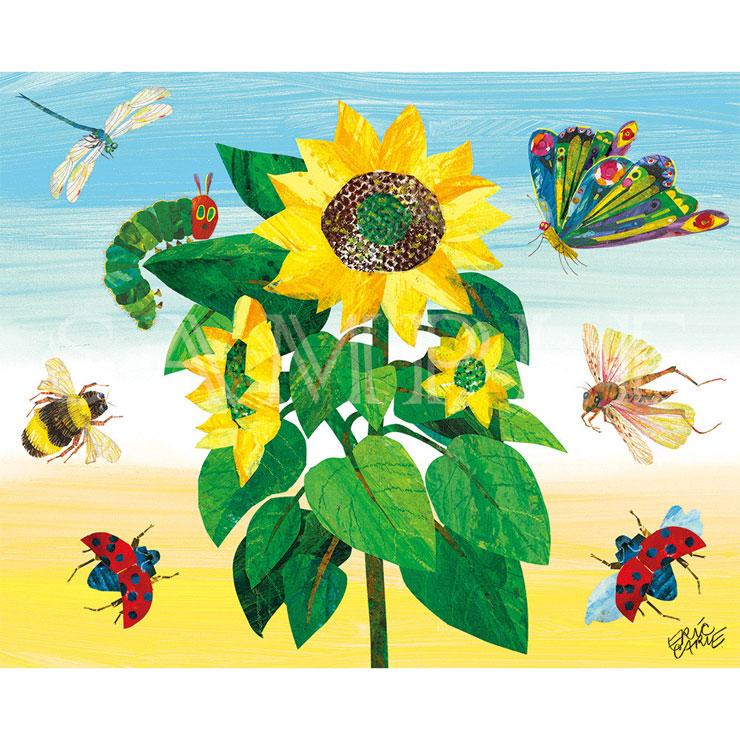 エリック・カール F3キャラファインボード 『Sunflower ひまわり』