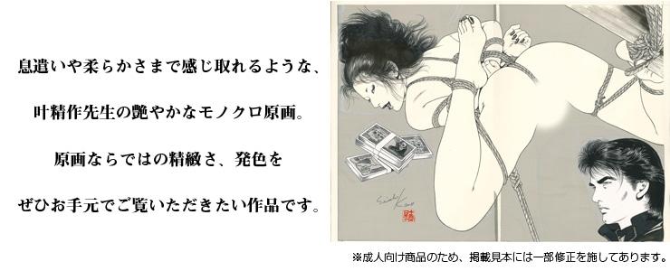 【限定1枚】叶精作「墜悪」 扉絵イラスト�【成人向け商品】
