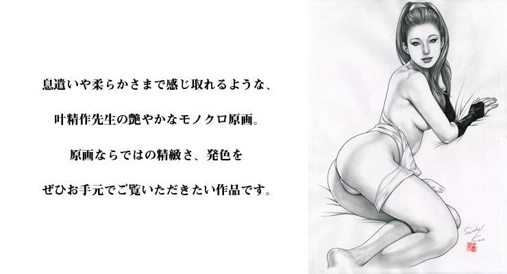 【限定1枚】叶精作 原画イラスト�