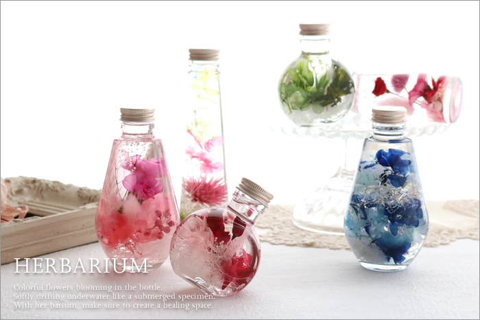 Atelier Toano Herbarium アトリエ トアーノ ハーバリウム コーン